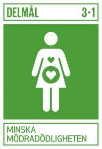 UN Interim Goal 3.1 - Reduce Maternal Mortality
